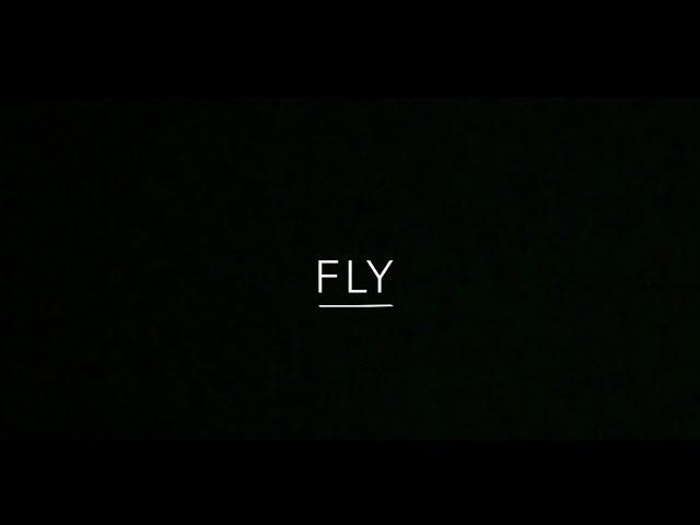 FLY E BEATRICE