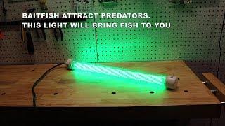 DIY Bait Light