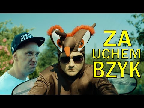 """Za uchem BZYK - KOMAR DISS (PARODIA Cleo """"Za krokiem krok"""")"""