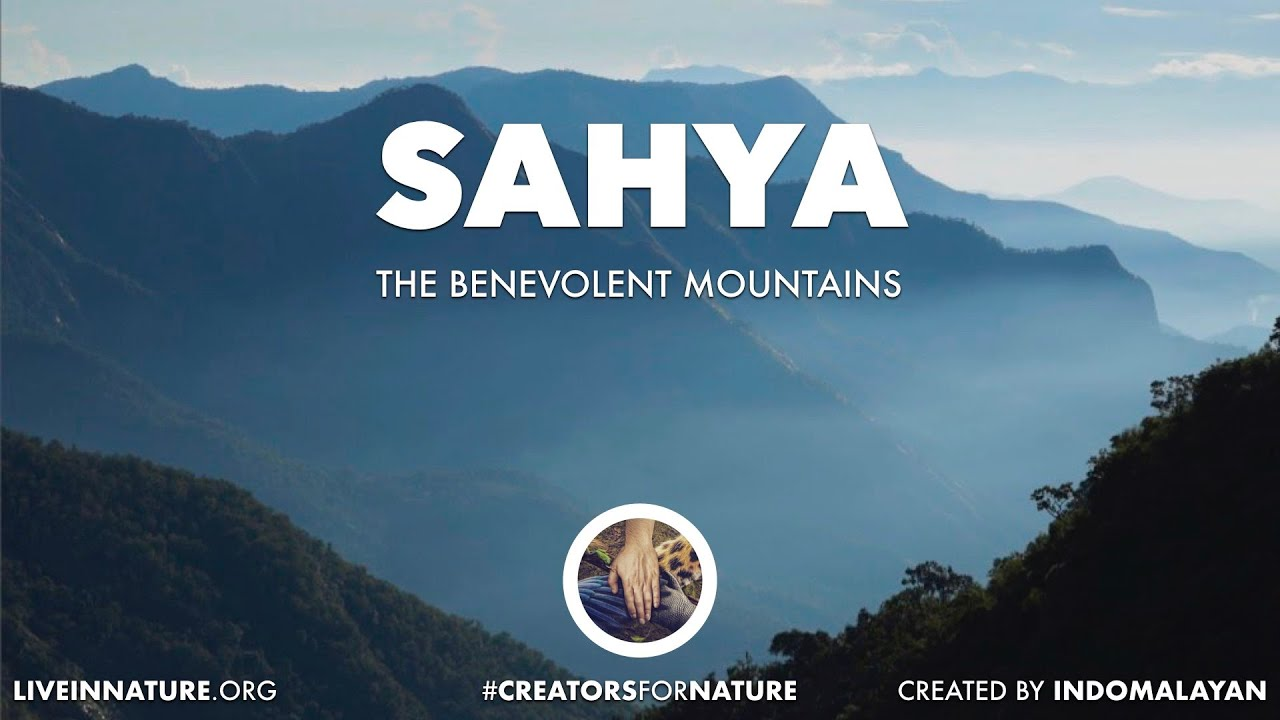 Realms of Nature | Sahya - The Western Ghats | 4K