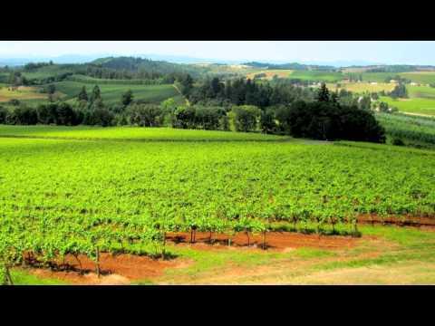Willamette Valley Vineyards – Turner, Oregon