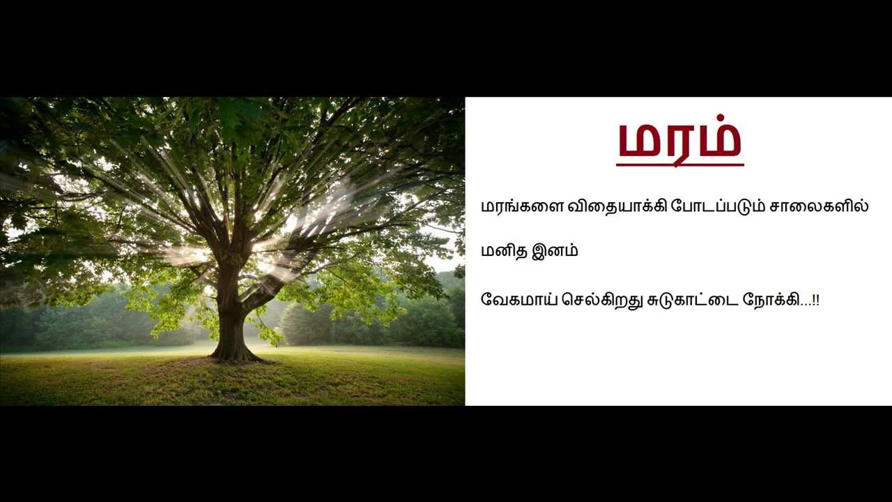 Kavithai Maram Youtube