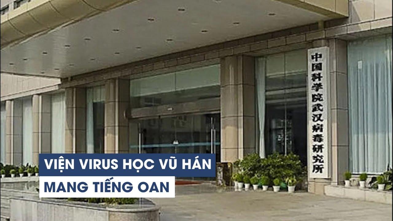 Viện Virus học Vũ Hán 'tổn hại thanh danh' vì tin đồn vô căn cứ