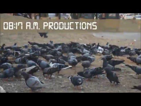 Modern Gandhigiri | Short Film | Be Creative