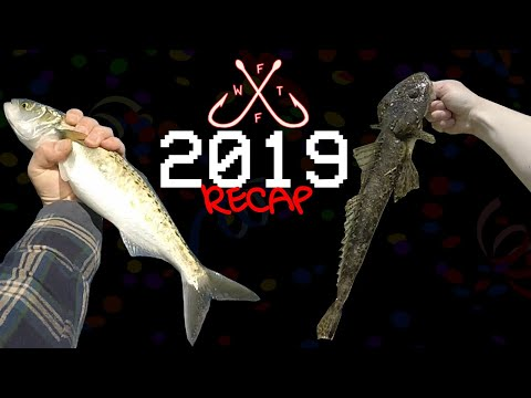 FISHING WITH THE FAMILY: 2019 RECAP