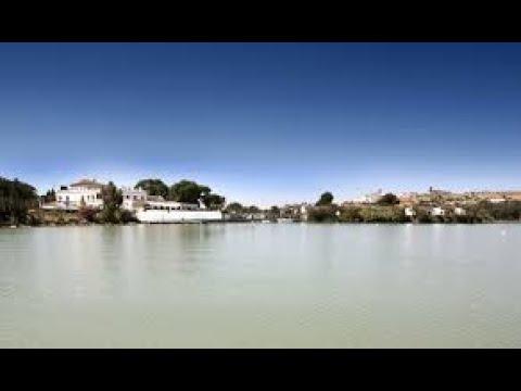 Match Fishing In Spain 24 Arcos De La Frontera Paste & Feeder Fishing