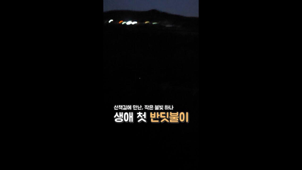 생애 첫 반딧불이를 본 아이들 반응?!