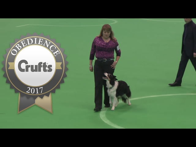 Obedience Championship - Bitches - Part 5 | Crufts 2017
