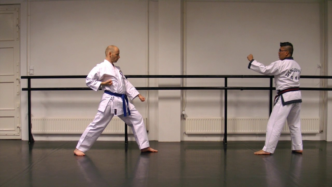Tang soo do 1 step sparring kick exercise youtube tang soo do 1 step sparring kick exercise fandeluxe Image collections