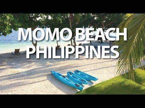 Momo Beach House Panglao Bohol Philippines