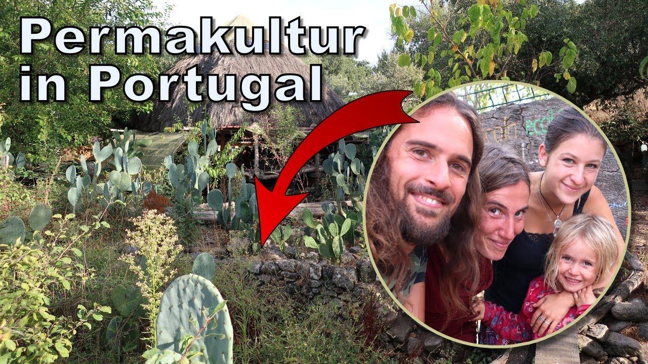 Was ist Permakultur? Doku: Wir zeigen euch erfolgreiche Selbstversorger in Portugal!