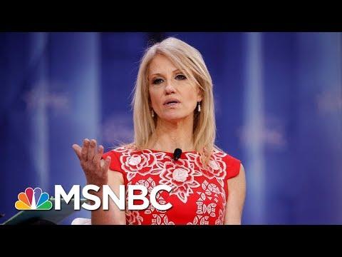Federal Watchdog Finds White House Aide Kellyanne Conway In Violation Of Hatch Act | MSNBC