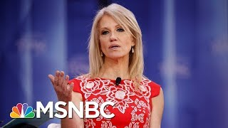 Federal Watchdog Finds White House Aide Kellyanne Conway In Violation Of Hatch Act | MSNBC