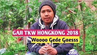 Download Video GAJI TKW HONG KONG 2018 WAOOO GEDE GAESSS MP3 3GP MP4