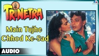 Trinetra : Main Tujhe Chhod Ke-Sad (Part-2) Full Audio Song | Kumar Sanu |