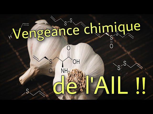 🧄  Ail et mauvaise haleine ? Vengeance chimique !!