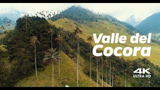 Valle del Cocora, Colombia (Aerial View Cinema 4K)