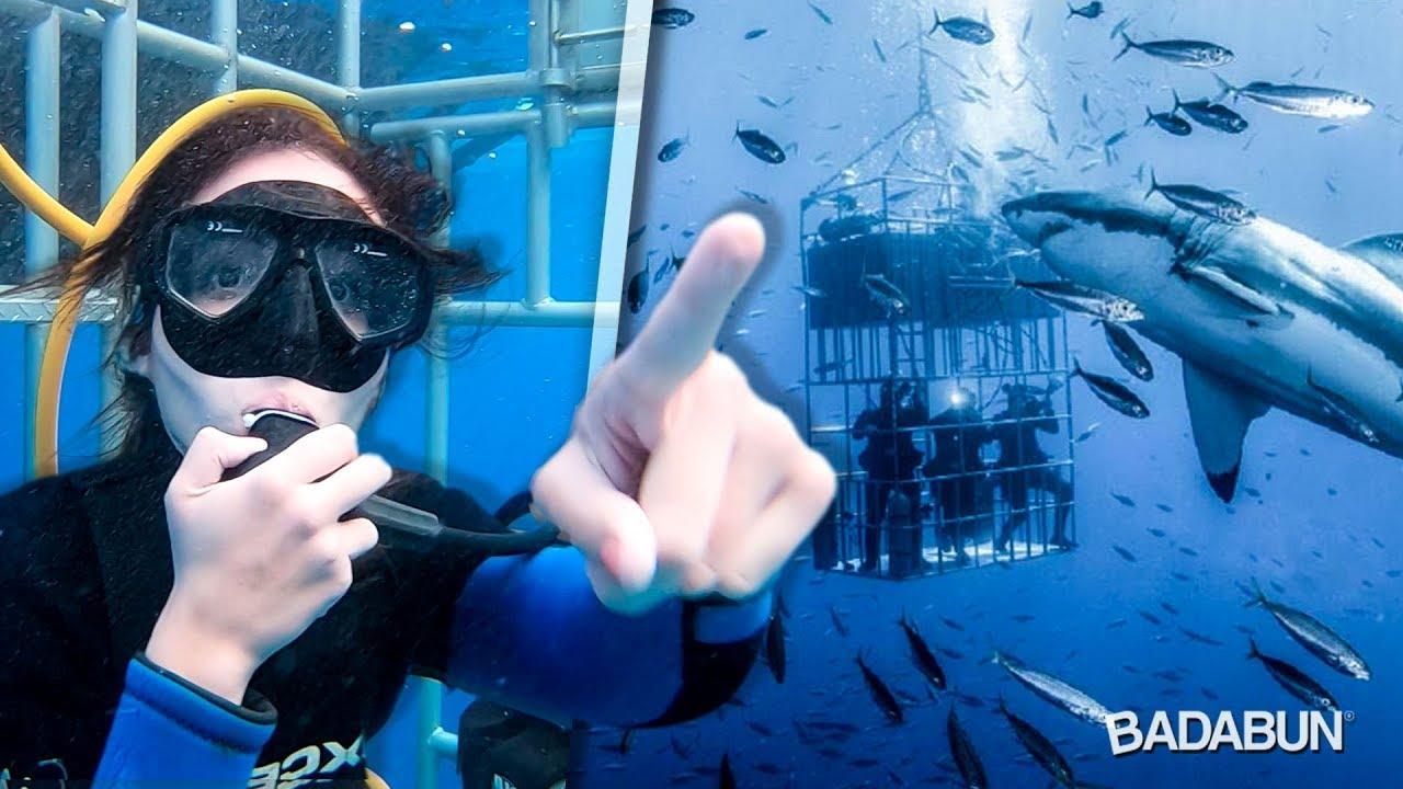 youtubers-nadan-con-tiburones-blancos