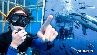YouTubers nadan con Tiburones Blancos