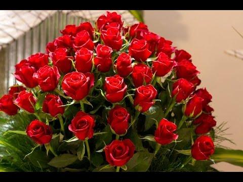 Красивые картинки с цветами розы