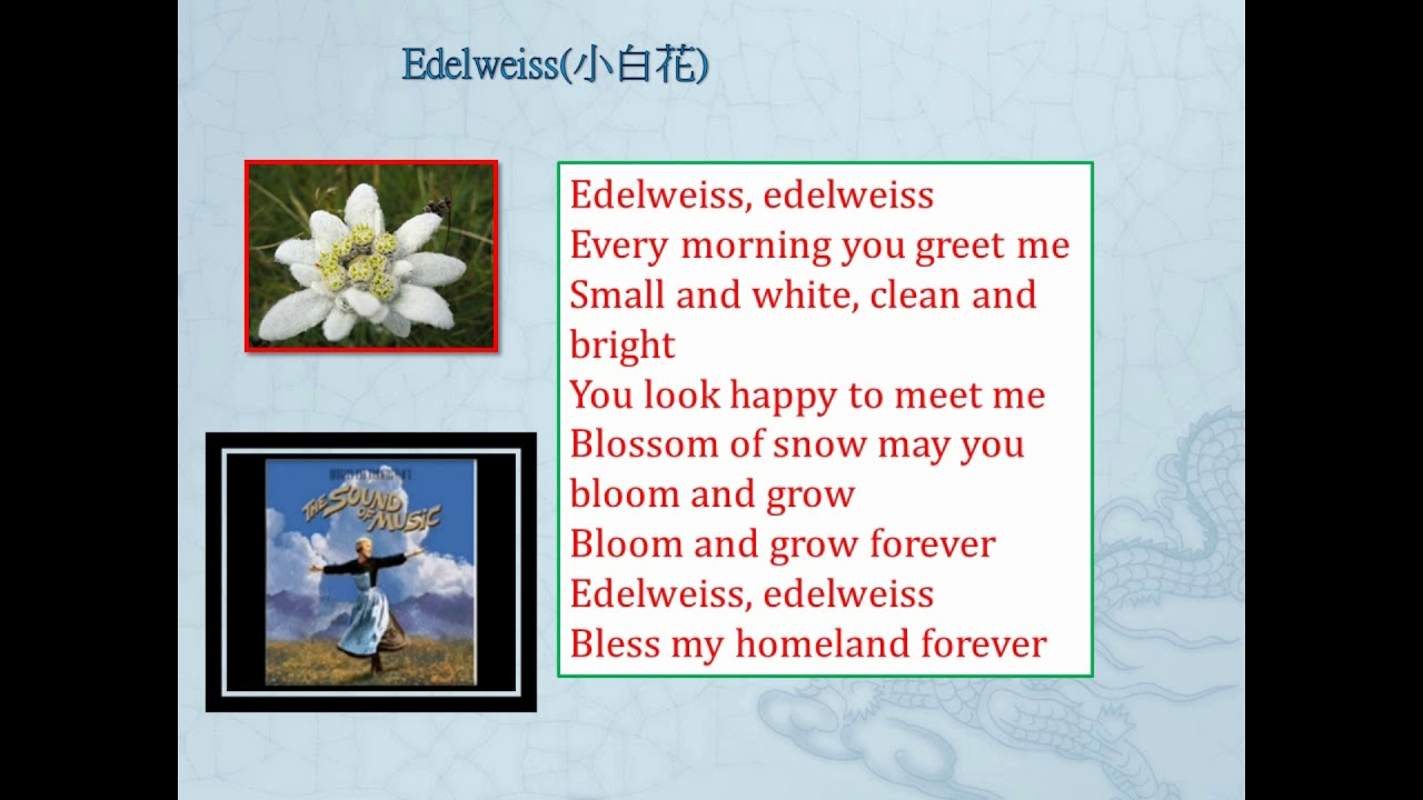 Edelweiss youtube edelweiss m4hsunfo