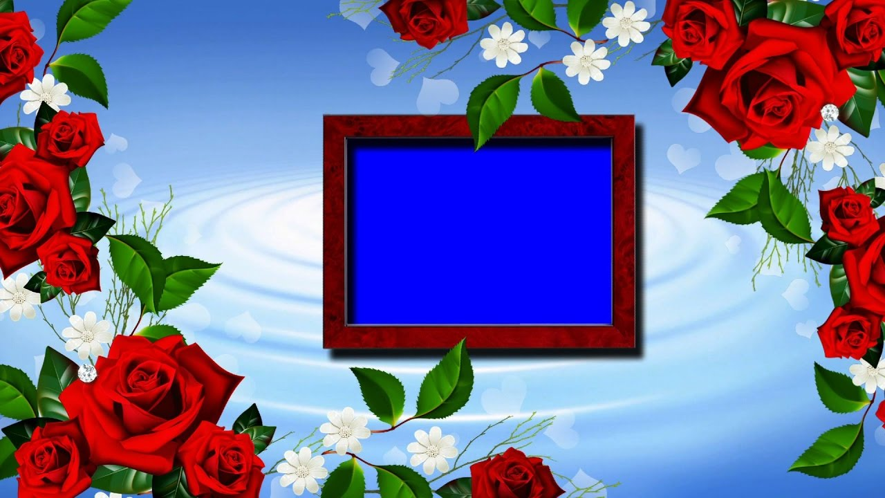 Free download HD background | Chroma key with Blue screen Wedding ...