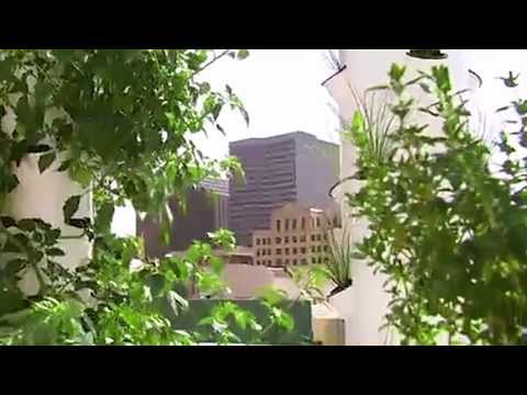 Future Growing® Rooftop Tower Garden® Farm at Rouses Supermarket in New Orleans