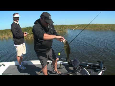 Okeechobee Shiner Fishing