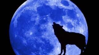 Trance Allstars - Moonlight Shadow Remix