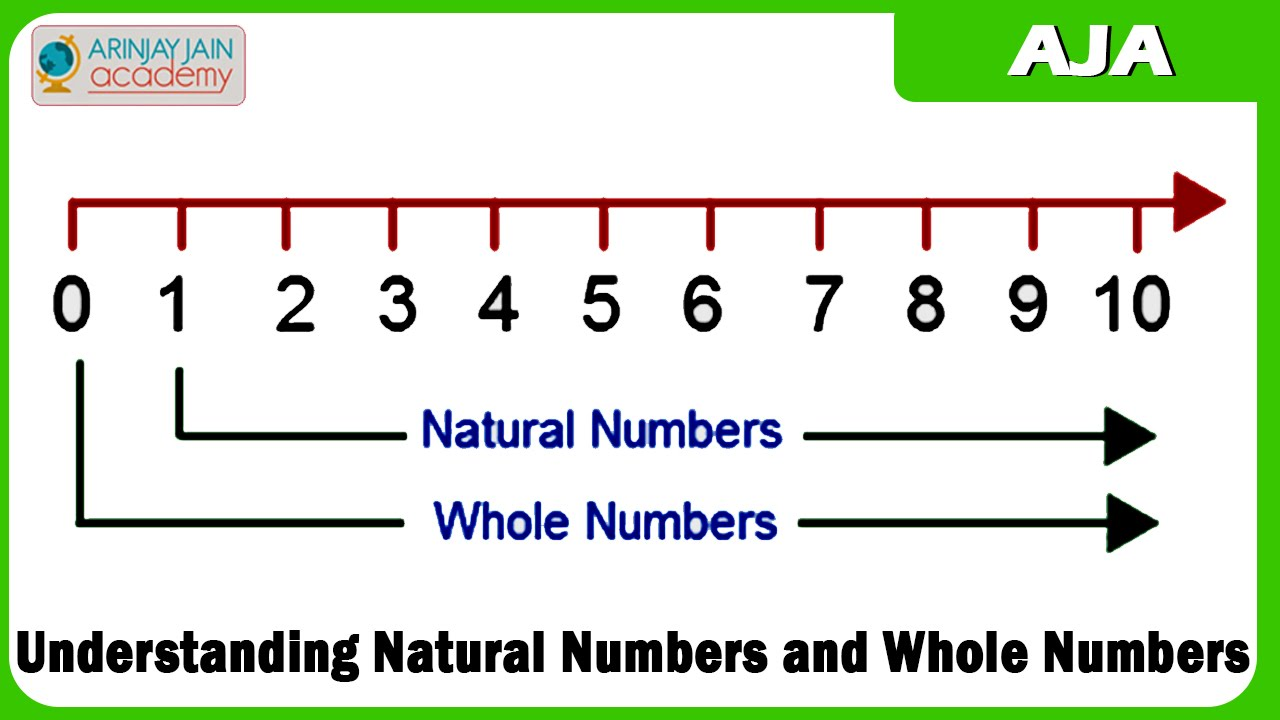 32 Understanding Natural Numbers And Whole Numbers Youtube