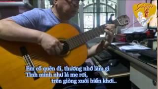 VÙNG LÁ ME BAY  (Trần Quang Lộc)