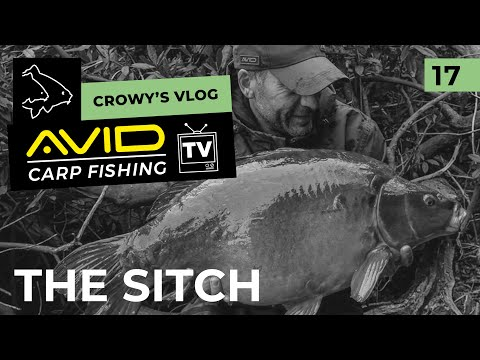 Avid Carp Fishing TV! | Crowy's Vlog! | 017 | The Sitch Carp Fishery