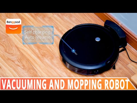 Vacuuming and Mopping robot at work Showcase