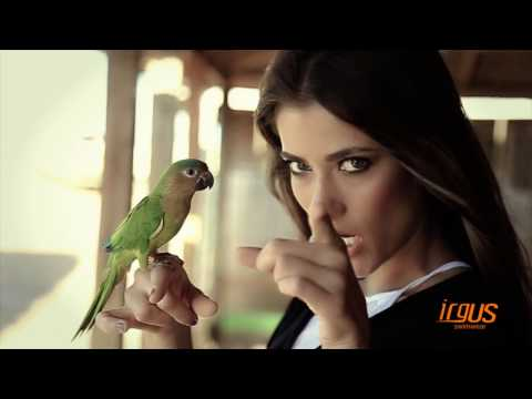 174fb13c8e VIDEO CAMPAÑA PCFK 17 2015 The Tropical Blues by videographix