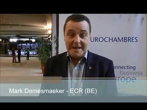 Mark DEMESMAEKER - ECR (Belgium)