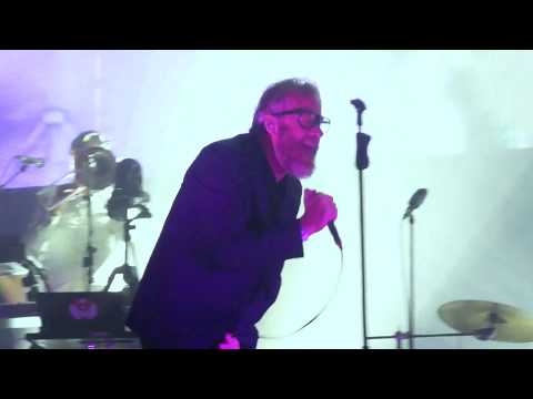 The National  The System Only Dreams In Total Darkness  Pitchfork Paris 2017