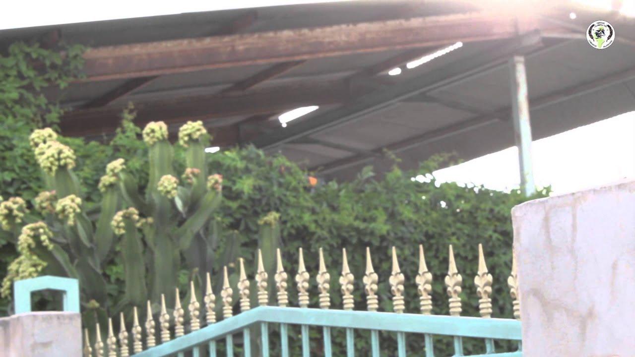 xxxi campeonato de colombicultura de la cv - jacarilla  5 u00aa prueba