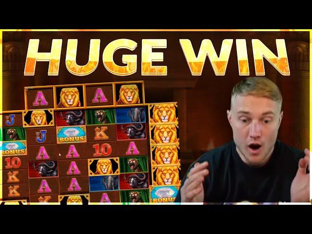 HUGE WIN!! Safari Gold BIG WIN  - Online slot from Casinodaddy LIVE Stream