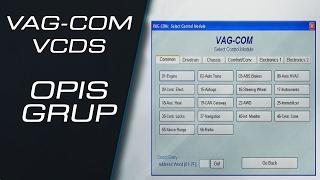 Opis grup parametrów w programach VCDS VAG COM