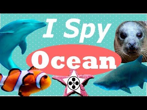 ANIMALS FOR KIDS! I Spy Ocean!