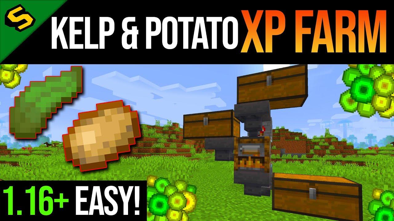 Minecraft EASY XP Farm Tutorial (Kelp & Potato) JAVA & BEDROCK 11.111+