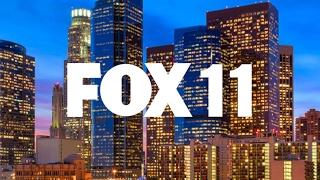 Dove Watch 2019: Dove nest cam LIVE from FOX 11 Studios in West LA