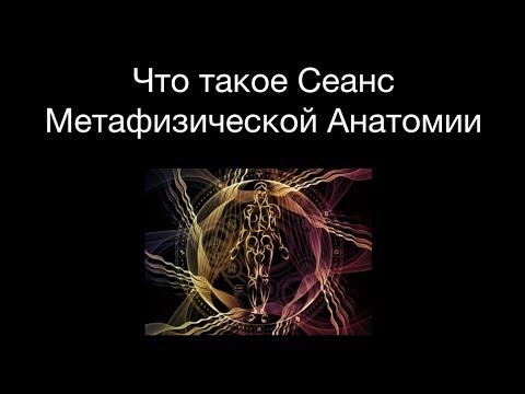 иветт роуз метафизическая анатомия