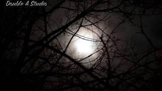 Qamarun Instrumental  / قمر - موسيقي