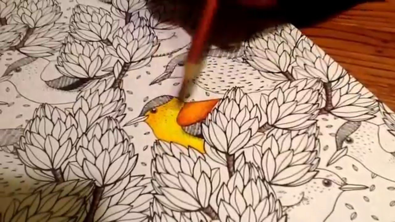 How to use colored pencils on adult coloring books. - YouTube