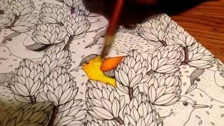 How to use colored pencils on adult coloring books.