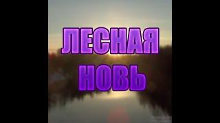 """Трейлер канала""""ЛЕСНАЯ НОВЬ"""""""