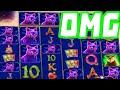 Madame Destiny Megaways 🔥 Slot MEGA BIG WIN 😱 CATS All the Way on a Huge Multiplier OMG‼️