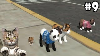 Cat Sim Online: Play with Cats -Level 36- Android / iOS - Gameplay Episode 9