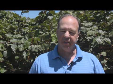 Meet A Kiwi Farmer!